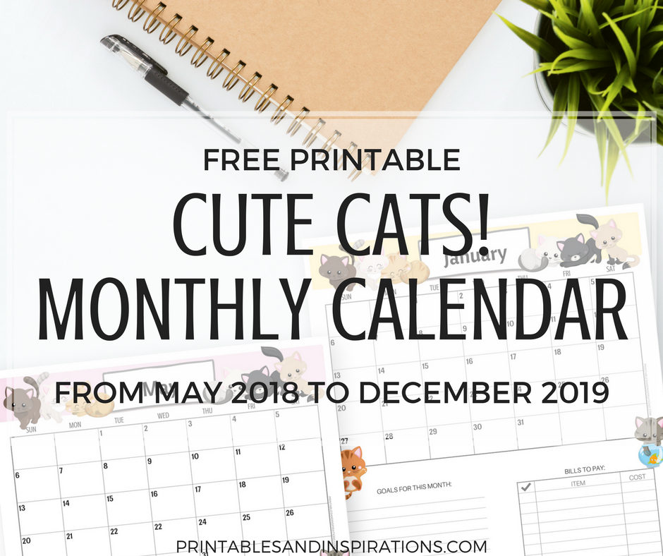 picture regarding Cute Free Printable Calendars titled Lovable Cats No cost Printable Month-to-month Calendar for 2018 and 2019